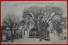 Postcard Of The  Caldas Da Rainha /  Entrada Do Parque  ( Lote N º 1234 ) - Leiria