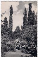 Abdij Van Roosenberg - Vredevolle Eenzaamheid /P113/ - Waasmunster