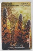 KUWAIT 1996 DESERT FLOWERS - Flores