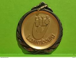Luxembourg Médaille, FLVB Luxembourg. Champion De Luxembourg 1999, Juniors Hommes - Entriegelungschips Und Medaillen