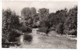 51 - SERMAIZE Les BAINS - La Saulx - Pêche - Canotage (C17) - Sermaize-les-Bains