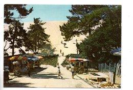"33 - LA TESTE-DE-BUCH . PYLA-SUR-MER . "" LA GRANDE DUNE DU PILAT "" - Ref. N°25591 - - France"