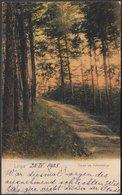 AK Leipa Partie Am Kahlenberge, Gelaufen 1903 - Tschechische Republik