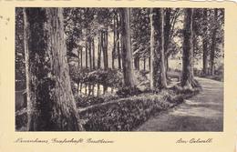 1256/ Neuenhaus, Grafschaft Bentheim, Am Oelwall, 1905? - Bentheim