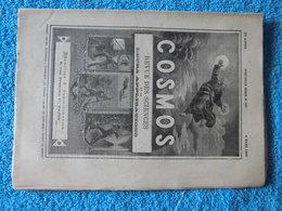 Réunion: « La Pêche De La Bichique » Au 19ème Siècle : Article De La Revue Cosmos Du 8 Mars  1890 - Newspapers