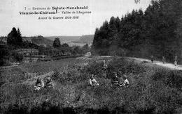 CPA - 51 - VIENNE-LE-CHATEAU - Vallée De L'Argonne - Avant La Guerre 1914-1916 - Autres Communes
