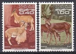 Algerien Algeria Algerie 1968 Tiere Fauna Animals Schafe Sheeps Mähnenschaf Hirsche Deers Berberhirsch, Mi. 510-1 ** - Algeria (1962-...)