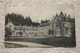 """Aywaille """"Château D'Amblève"""" - Aywaille"""
