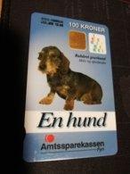 DENMARK 100 KRONER CHIP  DANMONT  HUND /GRAVHUND TECKEL  NICE USED CARD  ** 1687** - Dänemark