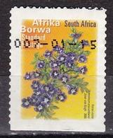 Sud Africa, 2000 - 1,40r Africa Borwa - Nr.1220 Usato° - Afrique Du Sud (1961-...)