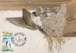 Carte Maximum - Oiseaux - Liechtenstein - Hirondelles - Swallows