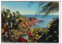Cpsm 06 Le Golf Juan , Rivages Méditerranéens , Vierge 1972 - Sonstige Gemeinden