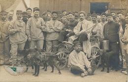 Avord Camp. Superbe Plan Epicier Ambulant En Voiture à Chien. Attelage . Dog Cart - Avord