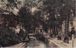 291463Zaandam, Weg 1920 (scheurtje En Vouwen) - Zaandam