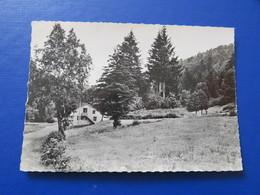 711. Colonie Saint-Bernard BUSSANG LA HUTTE (Vosges) - Bussang