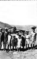 Carte 1950 BASUTOLAND / RECOLTE DES FRUITS SAUVAGES - Lesotho