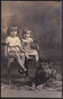 VIEILLE CARTE PHOTO (1929) FILLETTES AVEC CHIEN BERGER TERVUEREN - TERVUERENSE HERDER - GIRL WITH DOG - Foto Maes Tielt - Chiens