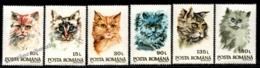 Romania - Roumanie 1993 Yvert 4076-81, Fauna, Cat Heads, Cats - MNH - Neufs