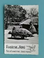 ZAMBIE - Rhodésie Du Nord - Danse Makishi.... - Zambia