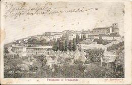 TREQUANDA - PANORAMA - F. PICCOLO (retro Indiviso) - VIAGGIATA 1904 - Timbro Riquadrato - (rif. D85) - Siena