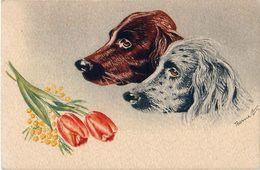 Cpsm Setters Et Tulipes Par Bernet - Perros