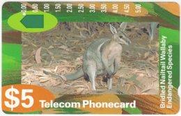AUSTRALIA B-491 Optical Telecom - Animal, Wallaby - Used - Australië