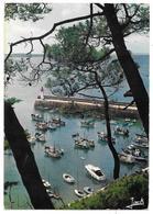 22 - ERQUY - Le Port Vu Du Noirmont - Ed. JACK N° 2727 - 1978 - Erquy