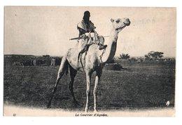 NIGER * AFRIQUE * COURRIER D'AGADEZ * CHAMEAU * Carte N° 17 - Niger