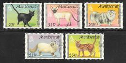 Montserrat - 1991 Cats Set 5v Fine Used - Montserrat