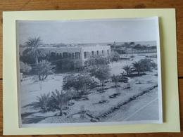 Djibouti La Poste Et Les Jardins 18x24 - Africa