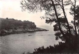 83-SAINT CYR SUR MER LES LECQUES-N°3500-C/0185 - Saint-Cyr-sur-Mer