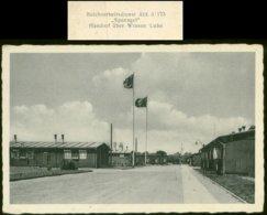 WW II Postkarte: Reichsarbeitsdienst Lager Abteilung 3 / 175 Handorf über Winsen Luhe , Ungebraucht , Bug Rechts. - Duitsland