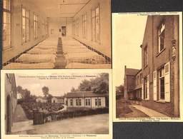 Vlimmeren - Katholieke Schoolkolonies - Lot 3 Kaarten (vaste Kleine Prijs) - Beerse