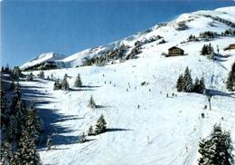 Skigebiet Bad Ragaz - Pizol, Pardiel 1630 M * 5. 1. 1981 - SG St. Gall