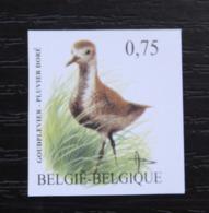 3269 'BUZIN: Goudplevier' - Ongetand - Zeer Mooi! - Belgique