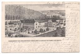 MARCHE LES DAMES 1900 PENSIONNAT DES RELIGIEUSES URSULINES / Carte Précurseur / Namur - Namur