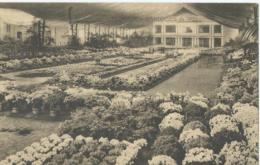 Gent - Gand - Floralies Gantoises De 1923 - Gent