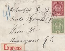 Autriche Lettre Par Exprès Mondsee 1917 - 1850-1918 Imperio