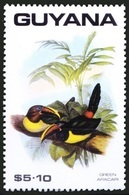 Green Aracari (Pteroglossus Viridis), Birds, Guyana 1990 MNH - Cuckoos & Turacos