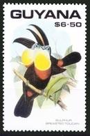 Keel-billed Toucan (Ramphastos Carinatus), Birds, Guyana 1990 MNH - - Cuckoos & Turacos
