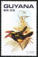 Tawny-tufted Toucanet (Selenidera Nattereri), Birds, Guyana 1990 MNH - Cuckoos & Turacos