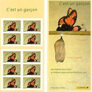 France.carnet Bc3635.c Est Un Garcon.année 2004.neuf Non Plié. - Commemoratives