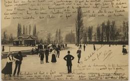1325 - Isére -  GRENOBLE - PATINAGE AU POLYGONE   Circulée En 1906 - Grenoble