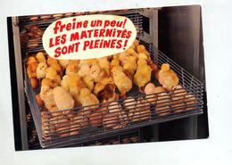 Carte Humour Maternite Poussin - Humor