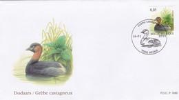 Enveloppe FDC 3993 Oiseau André Buzin Grèbe Castagneux Mons - 2001-10