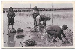 33 - Bassin D'ARCACHON - La Pêche Aux Huîtres - Ed. Bloc Frères, Bordeaux - 1932 - Arcachon