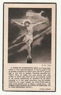 Doodsprentje Franciscus HEYLEN Noorderwijk 1858 Priester Mechelen Terhaegen Westmeerbeek 1944 - Images Religieuses