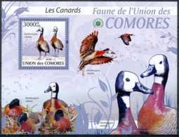 [35493]SUP//**/Mnh-BL - Union Des Comores - Les Canards - Dendrocygna Viduata - Oiseaux - Canards