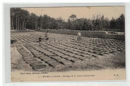40 LANDES TYPES LANDAIS SECHAGE DE LA RESINE COMMERCIALE N° 5 AGRICULTURE METIER - Ohne Zuordnung