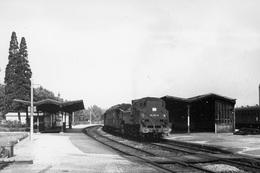 Paris-Reuilly. Locomotive 131 TB 13. Cliché Jacques Bazin. 19-07-1958 - Trains